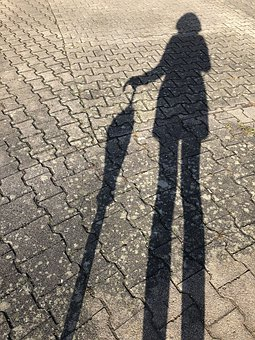 Shadow, Umbrella, Screen, Woman, Bones, Stones