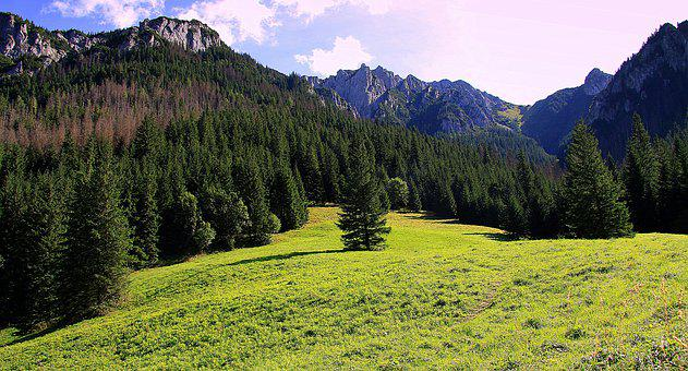 Mountains, Tatry, Poland, Landscape, View, Summer