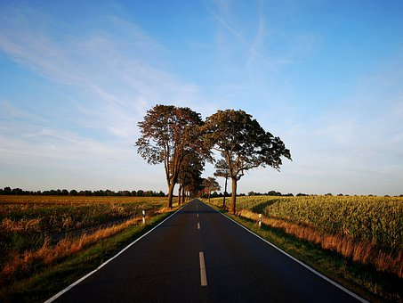 Road, Summer, Away, Nature, Sky, Scenic, Grass, Tree
