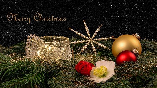 Merry Christmas, Festive, Noble, Christmas