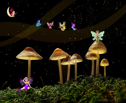 Fairies, Fantasy, Forest, Magic, Fairy Tales, Wing