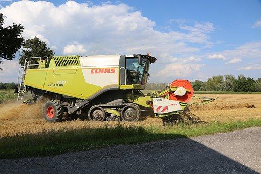 Combine Harvester, Harvest, Agriculture, Field, Cereals
