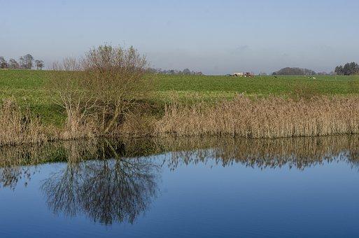 Field, France, Normandy, Landscape, Nature, Fields