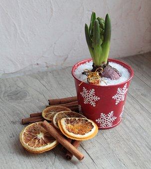 Decoration, Christmas, Deco, Red, Seasonal, Decorative