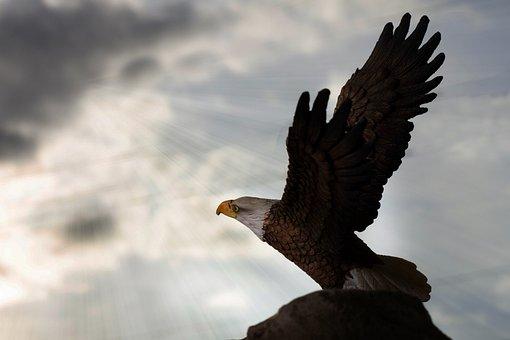 Adler, Artwork, Carving, Wood Carving, Bird, Animal