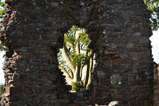 Wall, Tree, Scotland, Castle, Nature, Architecture