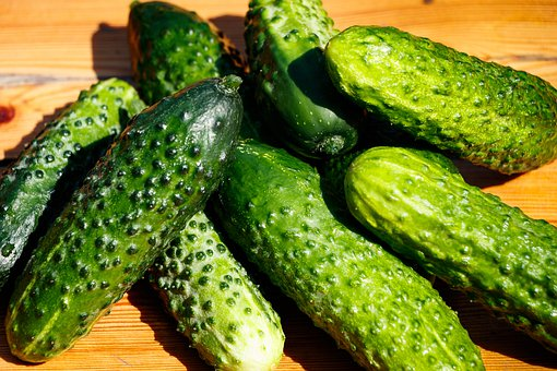 Cucumbers, Vegetables, Food, Healthy, Fresh, Cucumber