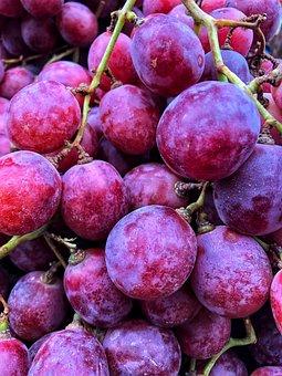 Grapes, Fruit, Vineyard, Vines, Bunch, Harvest, Sweet