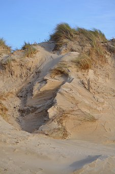 Dunes, Seaside, Sand, Golden, Wild, Windy