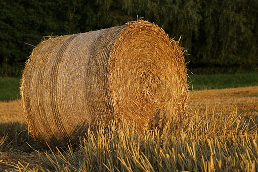 Straw, Bale, Agriculture, Harvest, Hay, Field