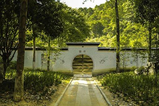 White Wall, Door, Doorway, Park, Tree, House