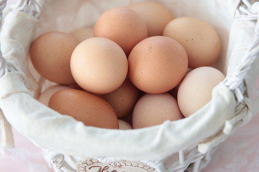 Egg, Food, Vitamin, Fresh, Breakfast, Nature, My Farm