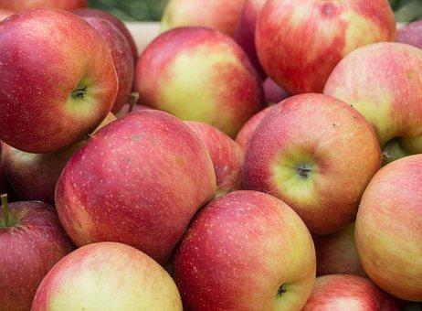 Apple, Fruit, Healthy, Vitamins, Fresh, Red, Browned