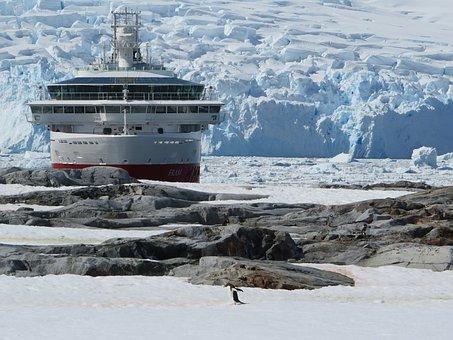 Antarctica, Snow, Ship, Ice, Penguin, Iceberg, Cruise