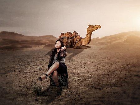 Desert, Donkey, Girl, Sunset, Sun, Holiday, Promenade
