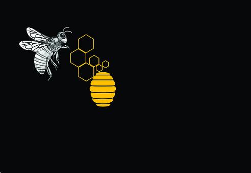 Honeybee, Beehive, Honey, Bee