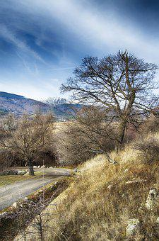 Winter, Gravel Road, Blue, Gold, December, Bulgaria