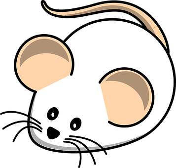 Mouse, White Mouse, Field, Animal, Rat, Mammal