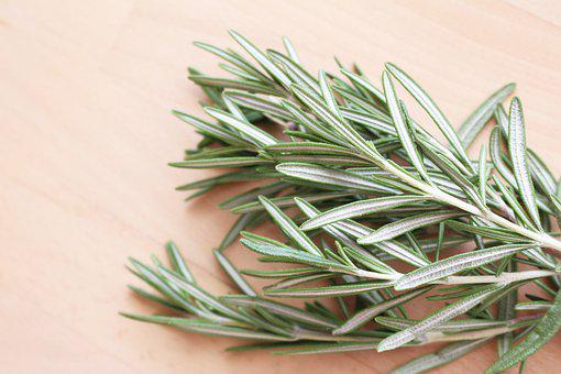 Bundle, Of, Rosemary, Leaves, Herb, Herbs, Food