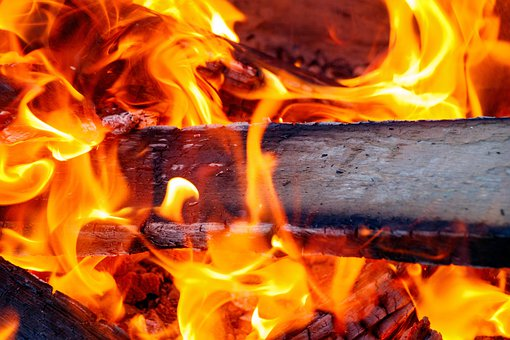 Fire, Red, Coals, Tree, Flame, Heat, Koster, Hot, Burn