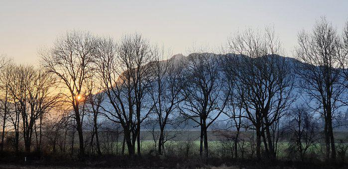 Evening, Sunset, Kahl, Trees, Ridge, Contrast, Mood