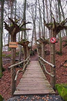 Bird Park, Wooden Bridge, Root Bridge, Web, Root