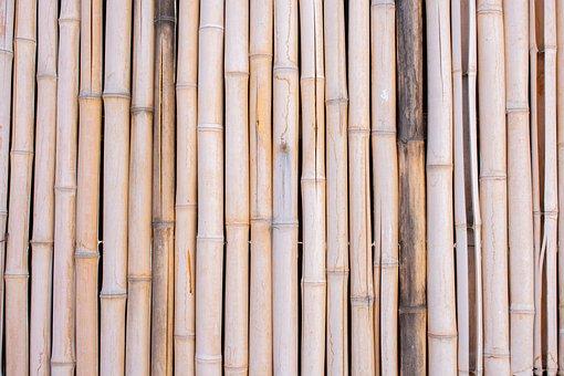 Bamboo, Cane, Fence, Beige