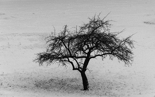 Black And White, Black, White, Brightness Value, Hell