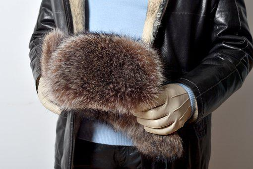 Pets, Human Hand, Furs, Leather Gloves, Gloves, Fashion
