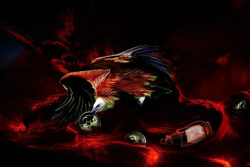 Vulture, Greed, Forward, Embers, Fire, Euro, Flame, Hot