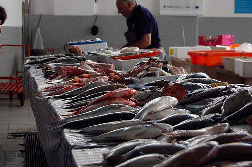 Morocco, Marrakech, Trip, Fish, Fish Market, Market