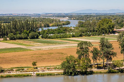 Provence, Avignon, South Of France, Summer, Field