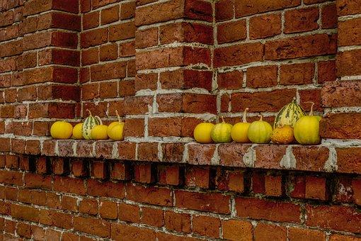 Wall, Brick, Pumpkin, Background, Red, Yellow