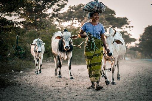 Myanmar, Woman, People, Female, Happy, Outdoor