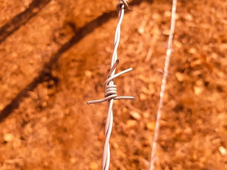 Barbed Wire, Iron Wire, Fence, Security, Border
