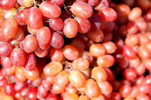 Grapes, Fruits, Red, Bunches Of Grapes, Fresh Grapes