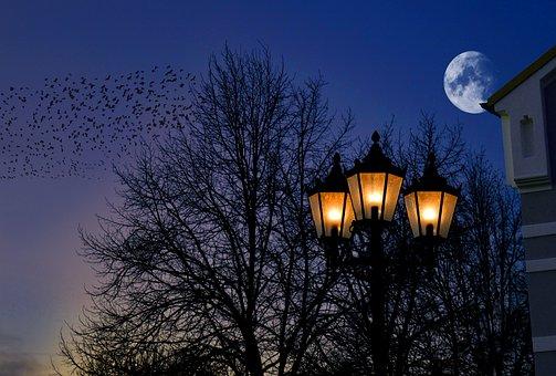 Abendstimmung, Moonlight, Moon, Lantern