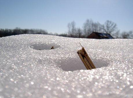 Snow, Melt, Nature, Winter, Landscape, Frozen, Cold