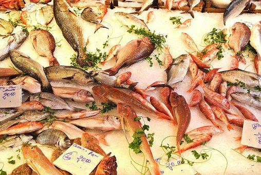 Fish, Market, Italy, Palermo, Sicily, Food, Fresh, Sea