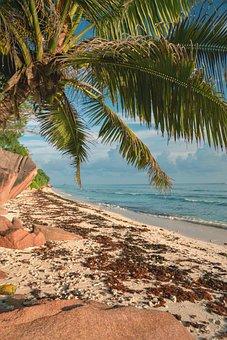 La Digue, Seychelles, Seychellen, An Island, Sea