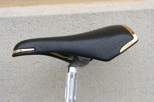 Bike, Saddle, Gold, Wheel, Cycling, Sport