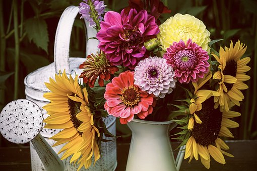 Flowers, Sunflower, Summer, Dahlias, Strauss, Colorful