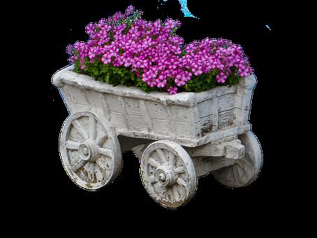 Flowers, Handcart, Isolated, Stroller, Deco, Postcard