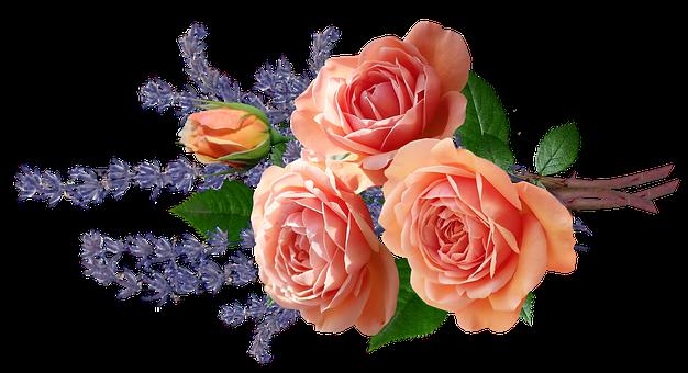 Flowers, Roses, Lavender, Bouquet, Fragrant, Cut Out