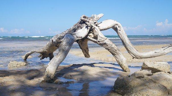 Beach, Jamaica, Caribbean, Tropical, Sea, Landscape