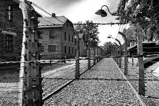 Auschwitz, Museum, Poland, Camp, Memorial, Fence