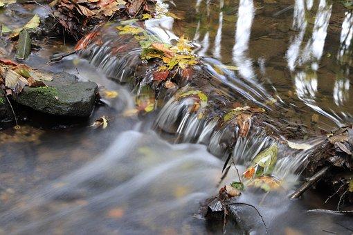Water, Fluent, River, Creek, Cascade, Wet, Environment