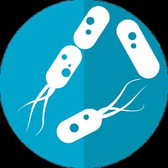 Bacteria Icon, Microbiome Icon, Gut Bacteria, Flora