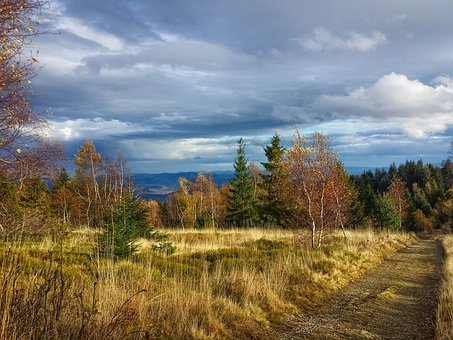 Mountains, Autumn, Forest, Clouds, Way, The Path