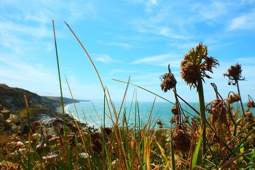 Sea, Pas De Calais, France, Beach, Side, Landscape